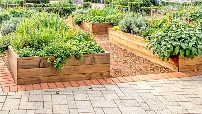 The Pros and Cons of Raised Gardens
