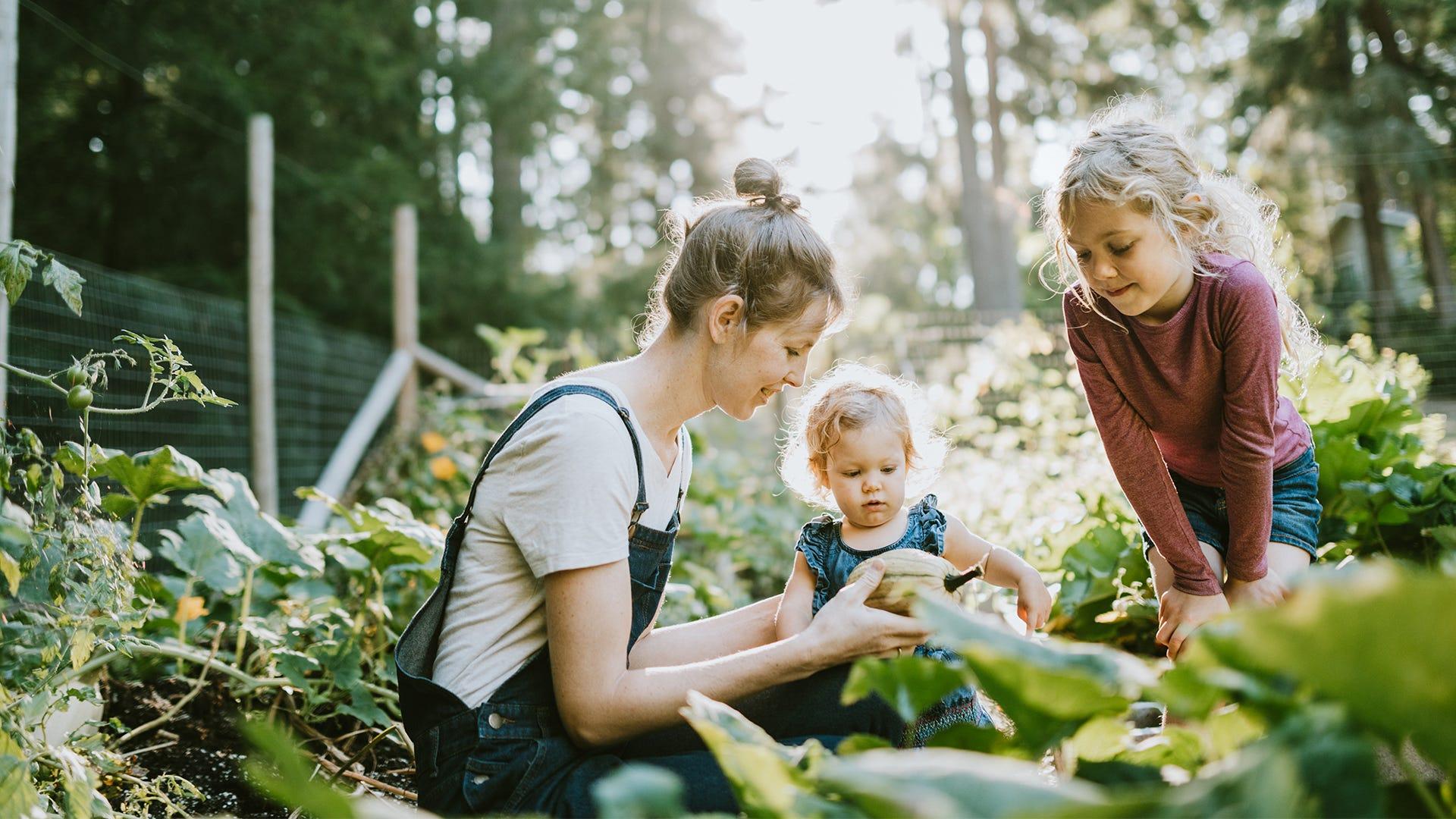 Why Organic: The Benefits of Living Organic